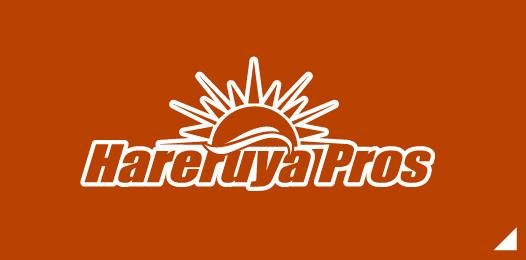 Hareruya Prosページへ